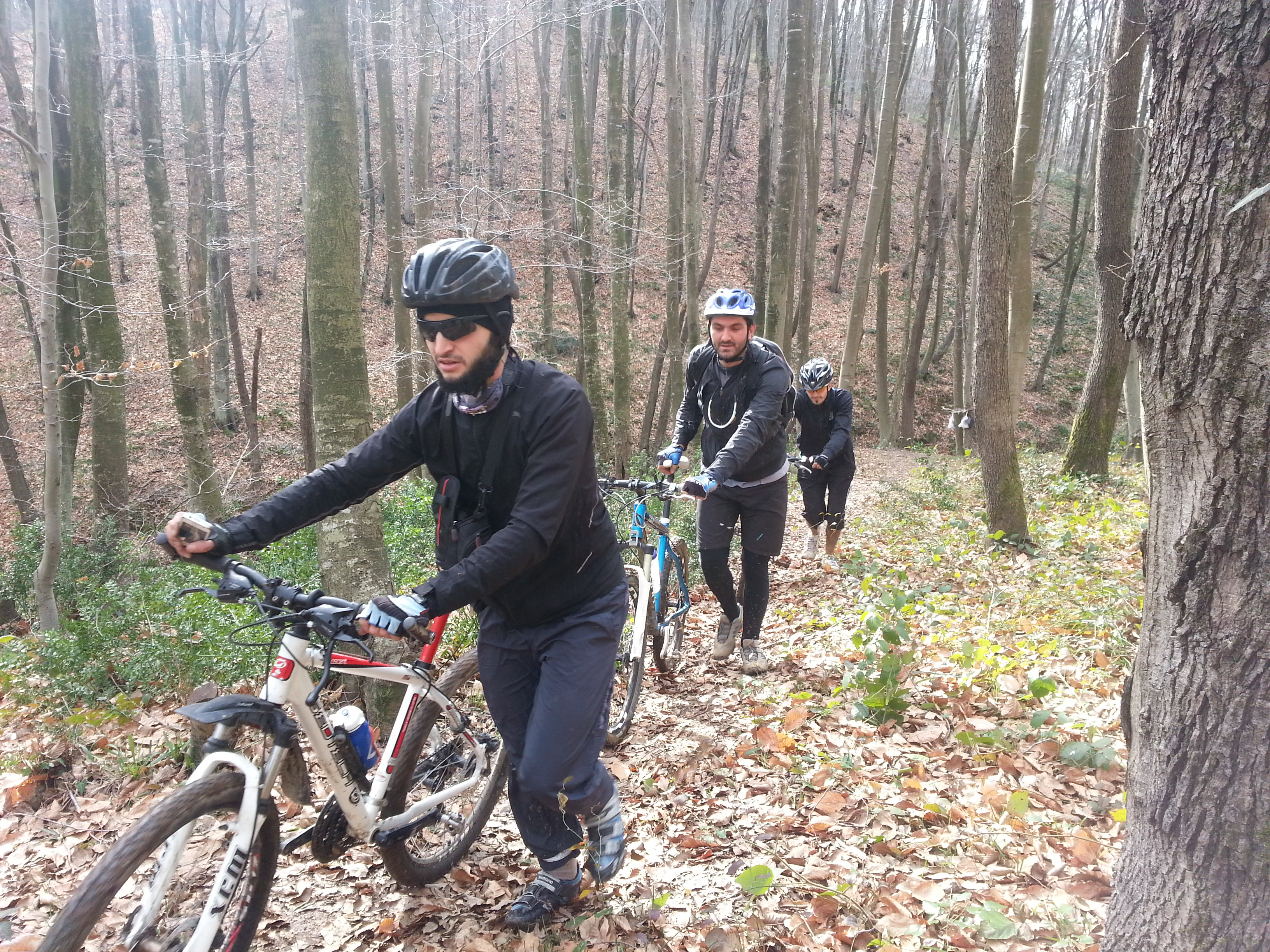 Carrying bikes in Belgrade Forest 2