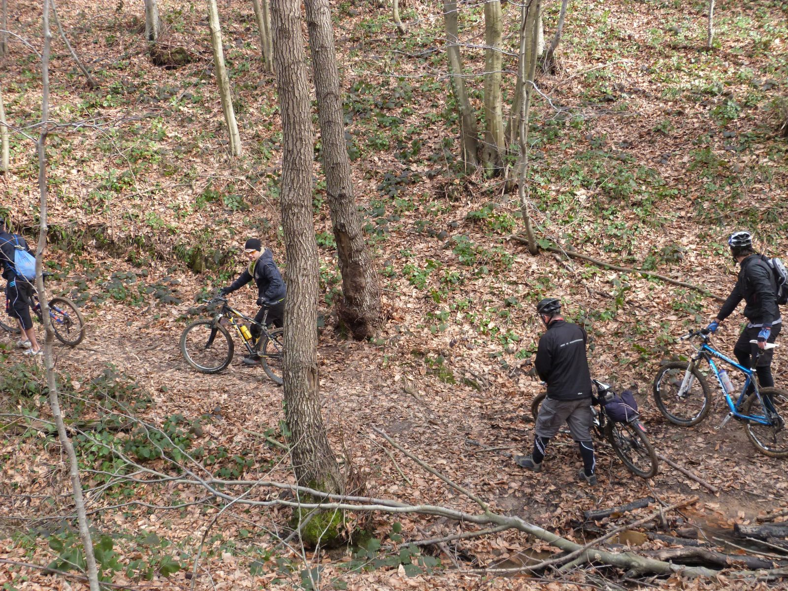 Carrying bikes in Belgrade Forest