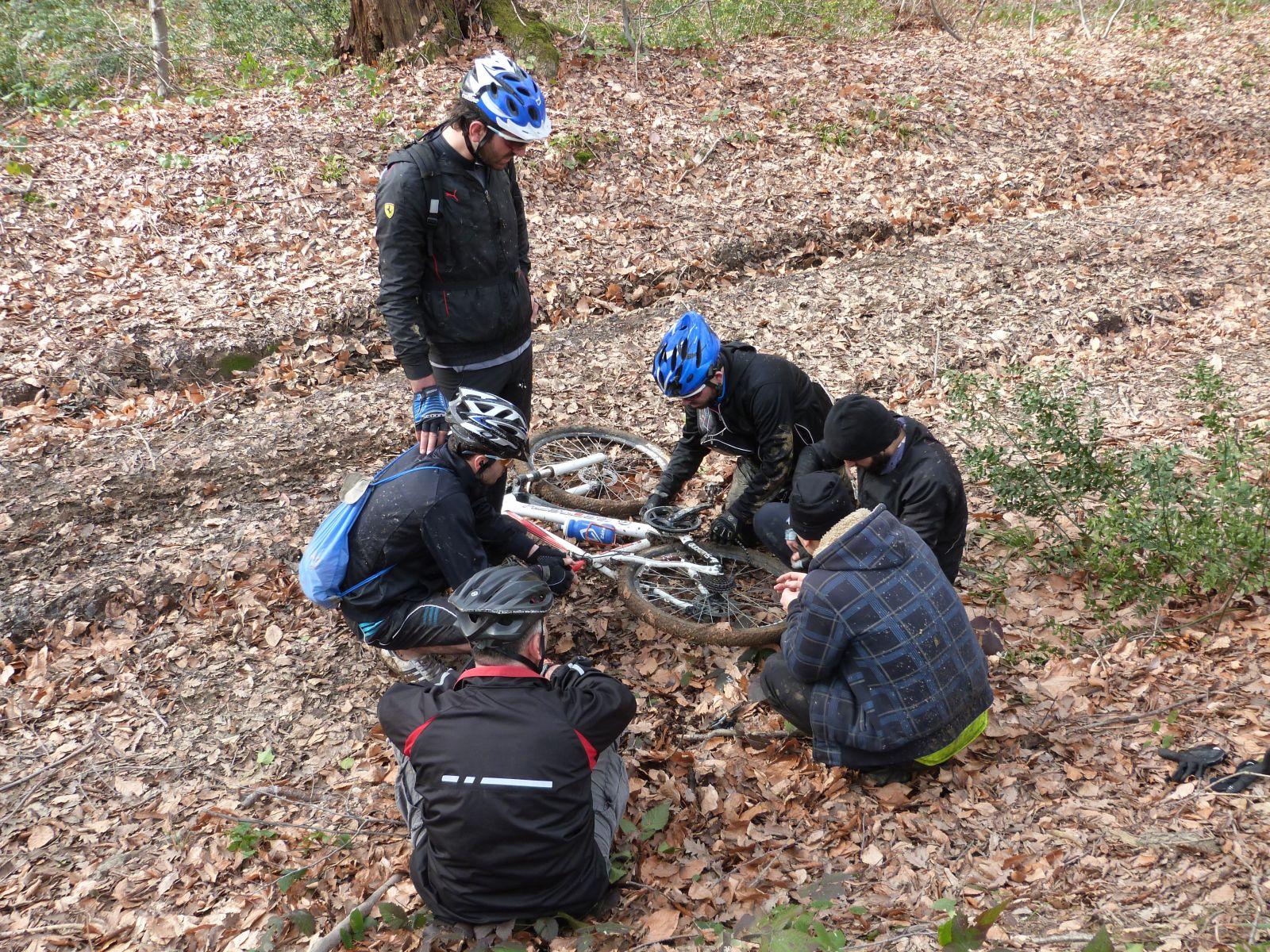 Teamwork for fixing a bike